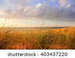 Lake Michigan Dune Grasses