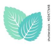 mint leaves isolated on white... | Shutterstock .eps vector #403477648