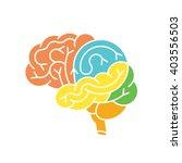 human brain anatomy structure.... | Shutterstock .eps vector #403556503
