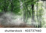 autumn forest. forest trail in... | Shutterstock . vector #403737460
