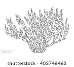 Coral Isolated  Coral Reef....