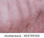 Pink Pig Skin  Close Up