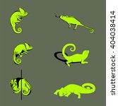 chameleon silhouette  in... | Shutterstock .eps vector #404038414