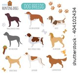 dog breeds. hunting dog set... | Shutterstock .eps vector #404102434