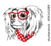 chinese crested portrait in a... | Shutterstock .eps vector #404141089