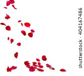 Stock photo rose petals fall to the floor isolated background 404167486
