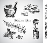 vector hand drawn herbs and... | Shutterstock .eps vector #404210116