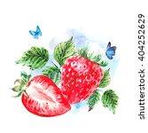 hand painting summer watercolor ... | Shutterstock . vector #404252629