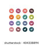 farm animals | Shutterstock .eps vector #404338894
