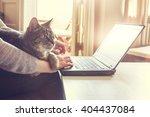 cat and notebook | Shutterstock . vector #404437084