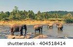 family asia elephant bath in... | Shutterstock . vector #404518414