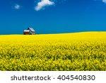 Mustard Field In Bloom Against...