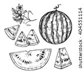 hand drawn vector illustration  ... | Shutterstock .eps vector #404551114