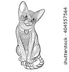 hand drawn ink pattern.... | Shutterstock .eps vector #404557564