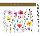 floral watercolor collection... | Shutterstock .eps vector #404559880