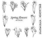 set of spring flowers.... | Shutterstock .eps vector #404597368