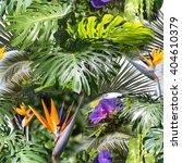 Floral Clip Art Colors Layers - Fine Art prints