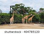 sydney  australia   march 2 ... | Shutterstock . vector #404785120
