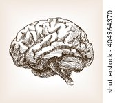 human brain sketch style ... | Shutterstock .eps vector #404964370