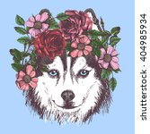 husky hippie and flowers. dog... | Shutterstock .eps vector #404985934