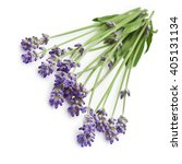 bunch of lavender flowers... | Shutterstock . vector #405131134
