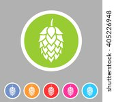 hop beer sign icon flat web... | Shutterstock .eps vector #405226948