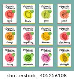 fruits and berries labels. hand ... | Shutterstock .eps vector #405256108