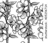 vector black and white flower...   Shutterstock .eps vector #405256714