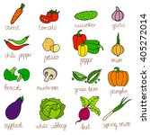 set of isolated hand drawn diet ... | Shutterstock .eps vector #405272014