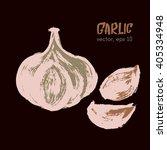 sketched vegetable illustration ... | Shutterstock .eps vector #405334948