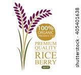 rice berry. vector illustration. | Shutterstock .eps vector #405401638