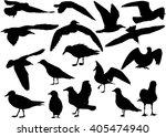 illustration with gull... | Shutterstock .eps vector #405474940