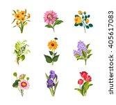 garden flowers hand drawn... | Shutterstock .eps vector #405617083