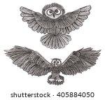 graphic illustration owl. black ... | Shutterstock . vector #405884050