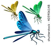 Brightly Colored Dragonfly....