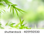 Green Nature Background With...