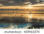 amazing colors at zanzibar... | Shutterstock . vector #405963370