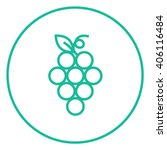 bunch of grapes line icon. | Shutterstock .eps vector #406116484