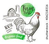 Chicken  Hen  Rooster  Cock ...