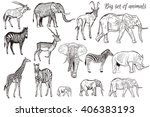 mega collection or set of... | Shutterstock .eps vector #406383193