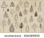 collection of sketch ink trees. ... | Shutterstock .eps vector #406389850