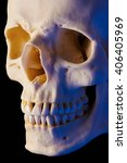 Cranial Bone  Short Lighting ...