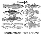 graphic fish collection drawn... | Shutterstock .eps vector #406471090