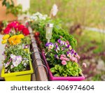 colorful flowers in pots on the ... | Shutterstock . vector #406974604