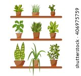 set of house plant isolated... | Shutterstock .eps vector #406975759