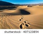 Footprints On The Sand Dunes O...