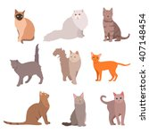 cat big set. beautiful cartoon... | Shutterstock .eps vector #407148454