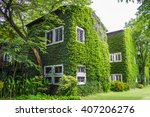 Vintage House Covered By Green...