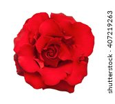 red rose. isolated on white... | Shutterstock . vector #407219263