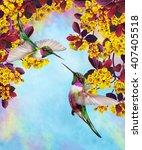 Two Little Birds Hummingbird O...